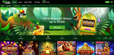 Roo Casino Detailed Review